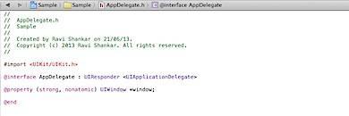Xcode Editor Window