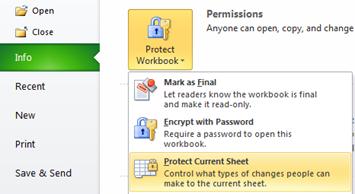 Info Menu - Protect Sheet