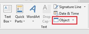 Insert Object Word 2013